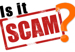 is sfi scam