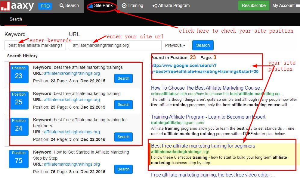 find website rank with jaaxy enterprise