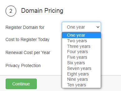 choose domain registration years