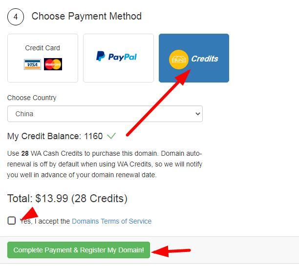 complete payment & register tdl domain name